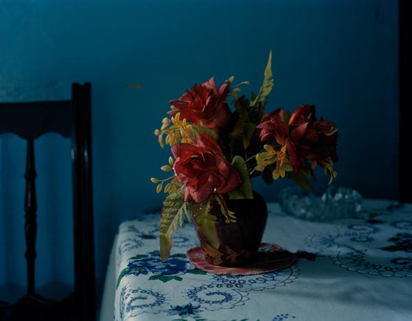 Fake Flowers, Photograph, 14 x 11 inches, 2010, $600