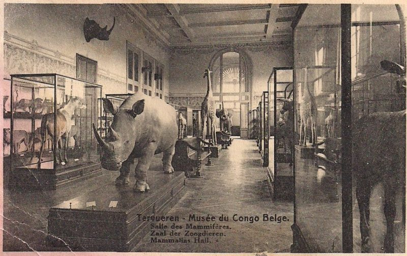 Anonymous, Musée du Congo Belge, Vintage Postcard, 5.5 x 3.5 inches, As Is / Some Wear, $25.