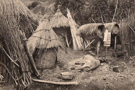 African Village, Vintage Postcard, Approx 3.5 x 5.5 inches, 1950's. $15 each.