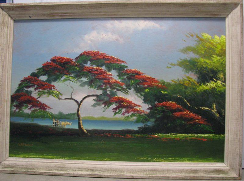 Samuel 'Sam' Newton, (Born 1948), Royal Poinciana Tree #1, Oil On Upson Board, 61x92cm_(Image), 72x103cm (Framed), 1968, Signed.