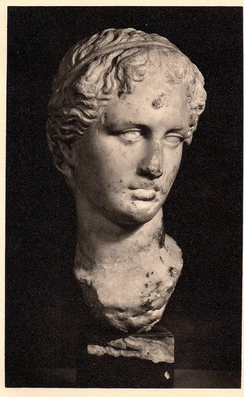 Marble: Head of youth, Greek 4th Century. Fitzwilliam Museum, Cambridge. Authentic Vintage Photographic Postcard, 1940-50's, Measures 4.5 x 5 inches (card sizes vary), Mild to no aging, $10.