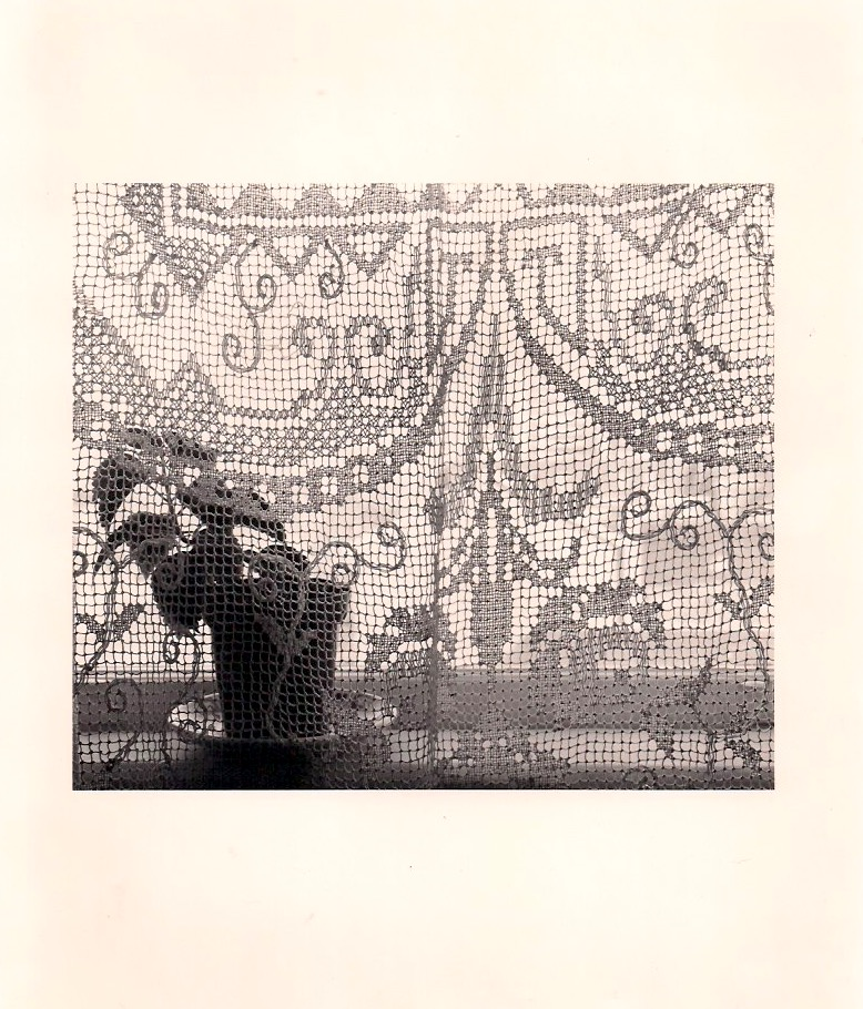Unknown Artist, Curtains & Plant, Silver Gelatin Photograph, 8 x 10 inches, 1980's, $25.