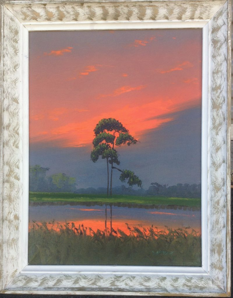 Sam Newton (Born 1948), Fire Sky Palm, Oil On Canvas, 46 X 61cm (Image), 66 X 81cm (Framed), 1977, Signed.