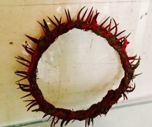 Authentic Crown of Thorns